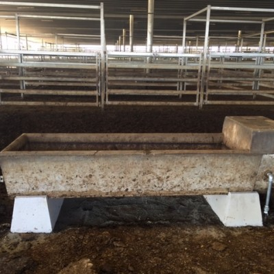 Install New troughs @ CTLX Livestock Exchange Carcoar