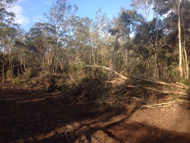 New South Wales Ground Leveling and Land Clearing